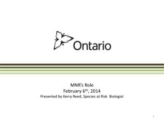 MNR's Role February 6 th , 2014 Presented by Kerry Reed, Species at Risk  Biologist