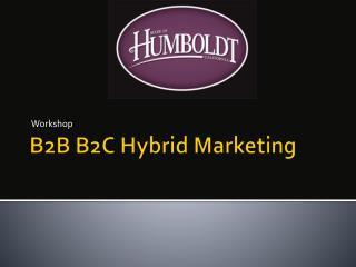 B2B B2C Hybrid Marketing