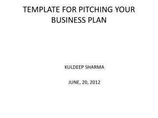 TEMPLATE  FOR PITCHING YOUR BUSINESS PLAN