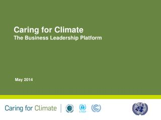 Caring for Climate  The Business Leadership Platform