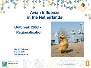 Avian Influenza  in the Netherlands