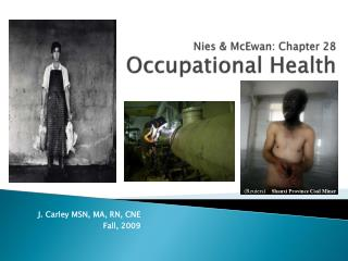 Nies  &  McEwan : Chapter  28 Occupational Health