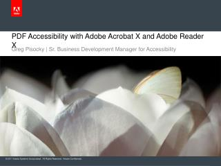 PDF Accessibility with Adobe Acrobat X and Adobe Reader X