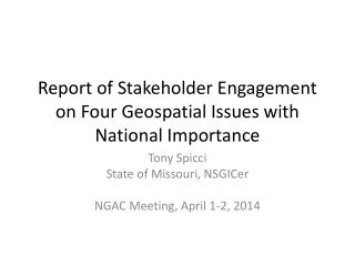 Report of Stakeholder Engagement on Four Geospatial Issues with National Importance
