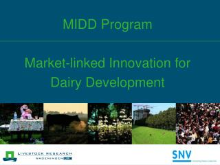 MIDD Program Market-linked Innovation for  Dairy Development