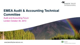 EMEA Audit & Accounting Technical Committee