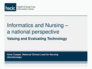 Informatics and Nursing –  a national perspective