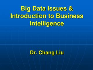 Big Data Issues & Introduction to Business Intelligence  Dr. Chang Liu