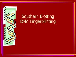 Southern Blotting  DNA Fingerprinting
