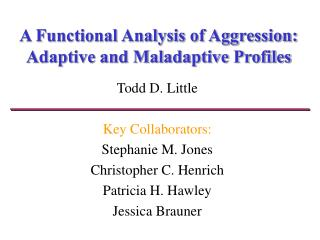 a functional analysis of aggression:  adaptive and maladaptive profiles