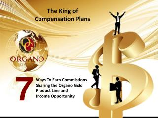 The King of  Compensation Plans