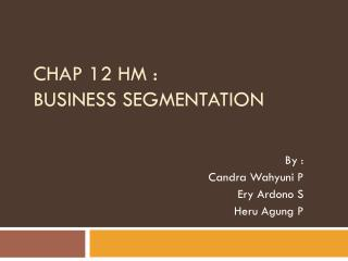 CHAP 12 HM : BUSINESS SEGMENTATION