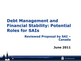 Debt Management and Financial Stability: Potential Roles for SAIs
