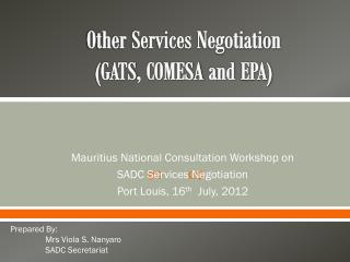 Other Services Negotiation ( GATS , COMESA and  EPA)
