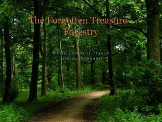 The Forgotten Treasure– Forestry