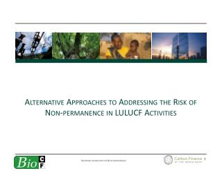 Alternative Approaches to Addressing the Risk of Non-permanence in LULUCF Activities