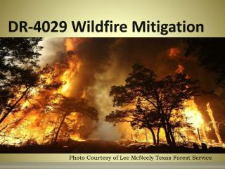 DR-4029 Wildfire Mitigation