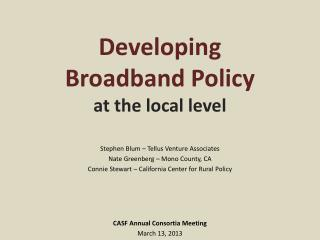 Developing  Broadband Policy at the local level