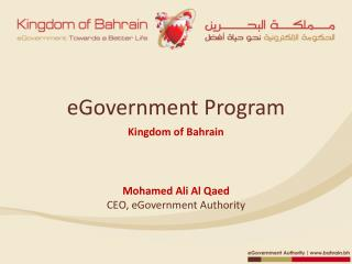 eGovernment  Program