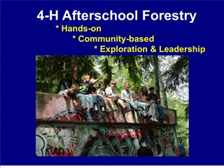 4-h afterschool forestry                        hands-on                                 community-based