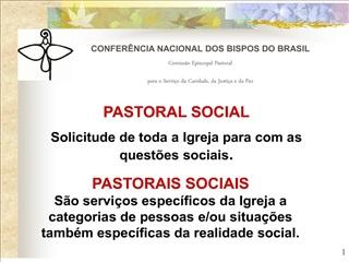 confer ncia nacional dos bispos do brasil  comiss o episcopal pastoral  para o servi o da caridade, da justi a e da paz