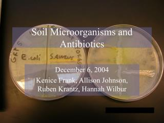 Soil Microorganisms and Antibiotics