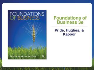 Foundations of Business 3e