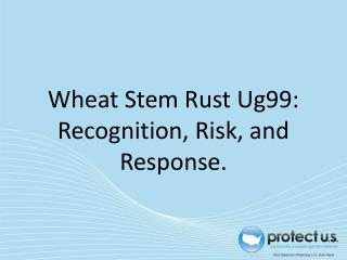 Wheat  Stem Rust Ug99: Recognition, Risk, and Response.