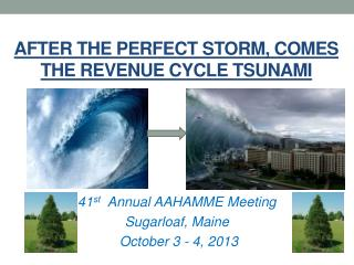 After the Perfect  Storm, comes  The Revenue  Cycle tsunami