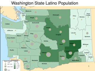 Washington State Latino Population
