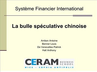 Syst me Financier International