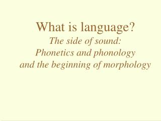 What is language? The side of sound:  Phonetics and phonology and the beginning of morphology