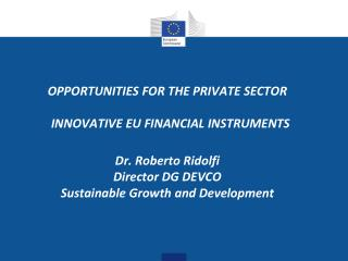 OPPORTUNITIES FOR THE PRIVATE SECTOR   INNOVATIVE  EU FINANCIAL  INSTRUMENTS Dr. Roberto  Ridolfi Director  DG DEVCO Sus