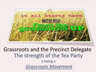 Grassroots and the Precinct Delegate