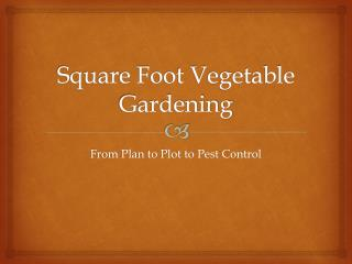 Square Foot Vegetable Gardening