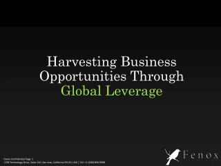 Harvesting Business Opportunities Through  Global Leverage