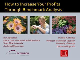 How to Increase Your Profits Through Benchmark Analysis