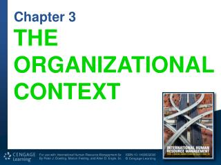 THE ORGANIZATIONAL CONTEXT
