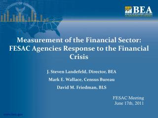 Measurement of the Financial Sector: FESAC Agencies Response to the Financial Crisis
