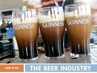 THE BEER INDUSTRY