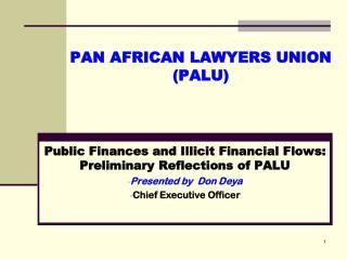 PAN AFRICAN LAWYERS UNION (PALU)