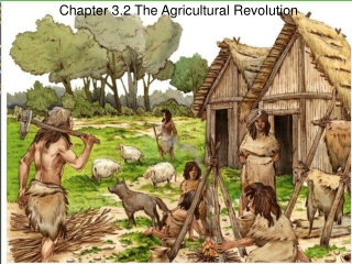 Lecture 3 Neolithic Revolution and the Discovery of Agriculture