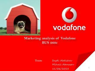 Marketing analysis of Vodafone BUS 260c