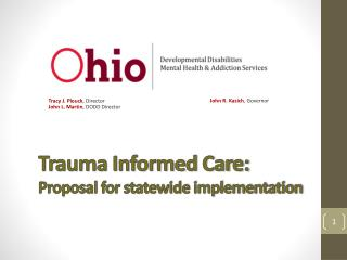 Trauma Informed Care: Proposal for statewide implementation
