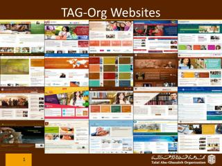 TAG-Org Websites
