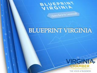BLUEPRINT VIRGINIA