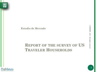 Report of the survey of US Traveler Households