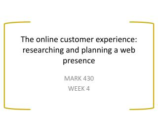 The online customer experience: researching and planning a web presence