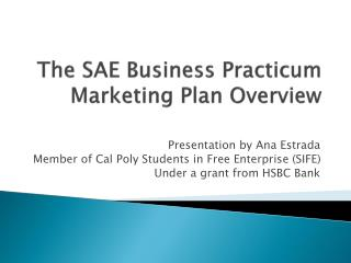 The SAE Business Practicum Marketing Plan Overview