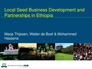 Local Seed Business Development and Partnerships in Ethiopia Marja Thijssen, Walter de Boef & Mohammed Hassena